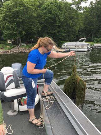 Scott County Aquatic Plant Surveys